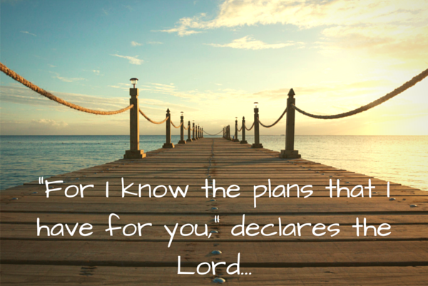 Letting Go of Your Plans